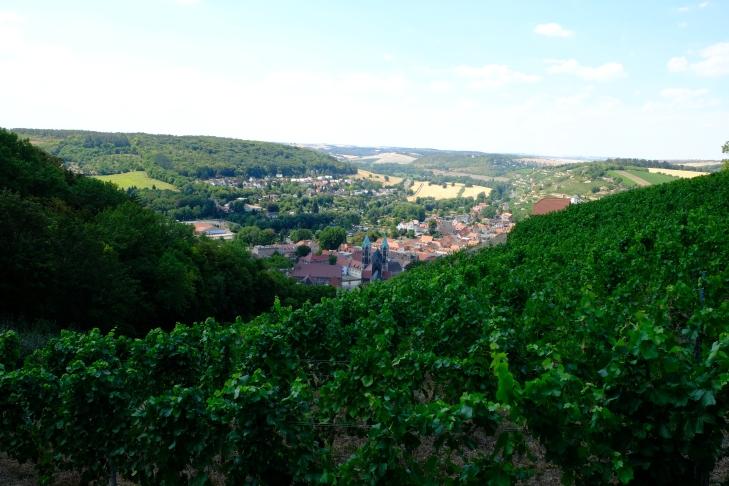 Blick über die Weinberge nach Freyburg hinunter